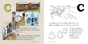 C is for Chicken Coops