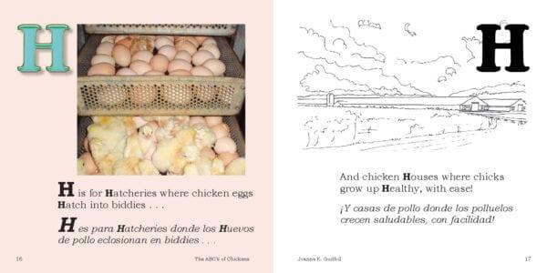 H is for chicken hatchery